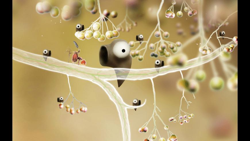 Botanicula for Mac - review, screenshots