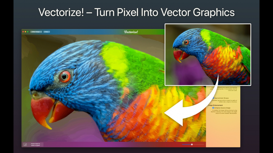 Vectorize! for Mac - review, screenshots