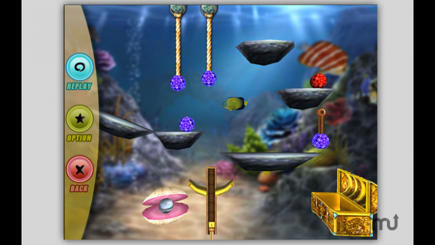 BrainsPool for Mac - review, screenshots