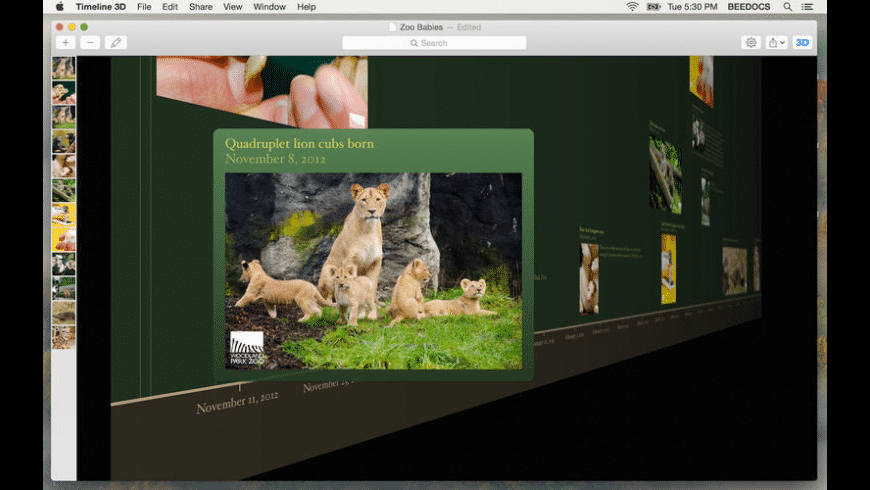 Timeline 3D for Mac - review, screenshots