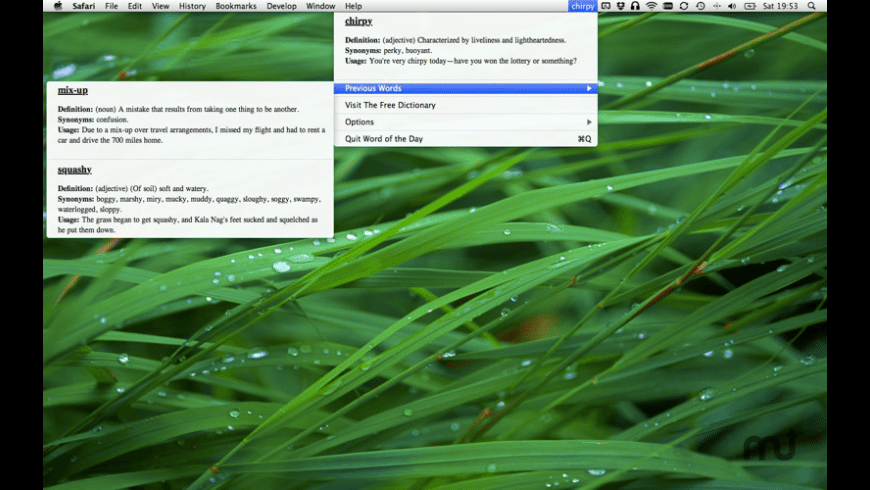 Word of the Day for Mac - review, screenshots