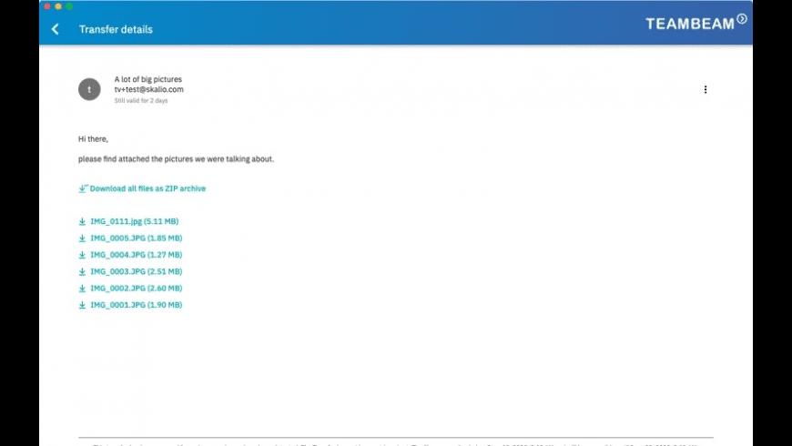 TeamBeam for Mac - review, screenshots