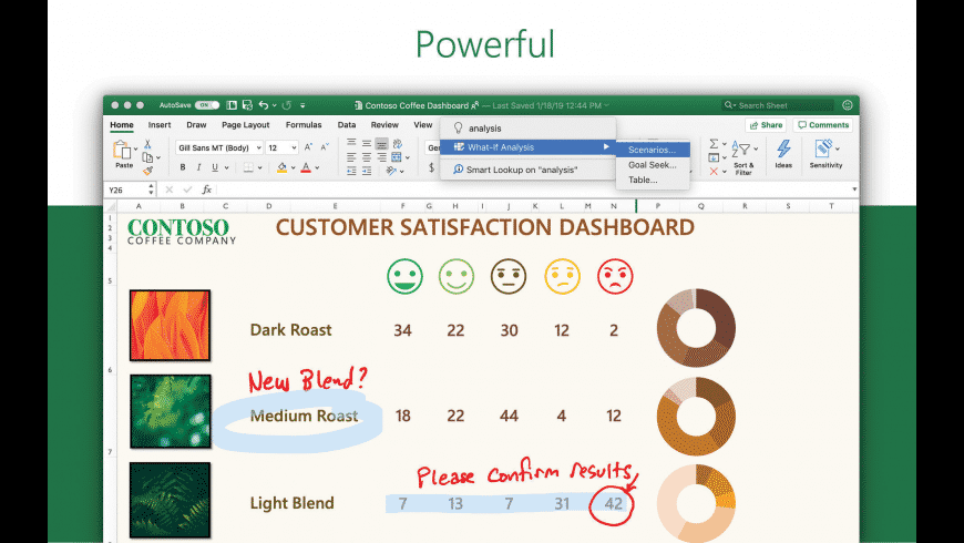 Microsoft Excel for Mac - review, screenshots