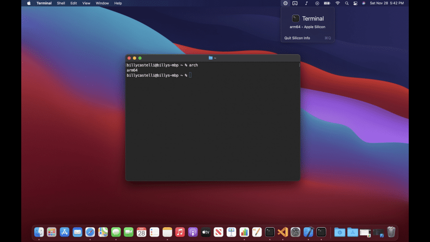 Silicon Info for Mac - review, screenshots