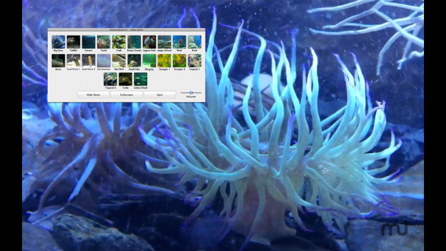 Virtual Aquarium for Mac - review, screenshots