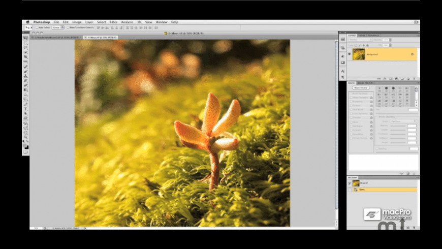 Photoshop CS5 Retouching & Image Adjustment for Mac - review, screenshots