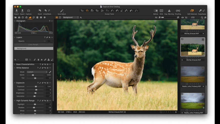Capture One for Mac - review, screenshots