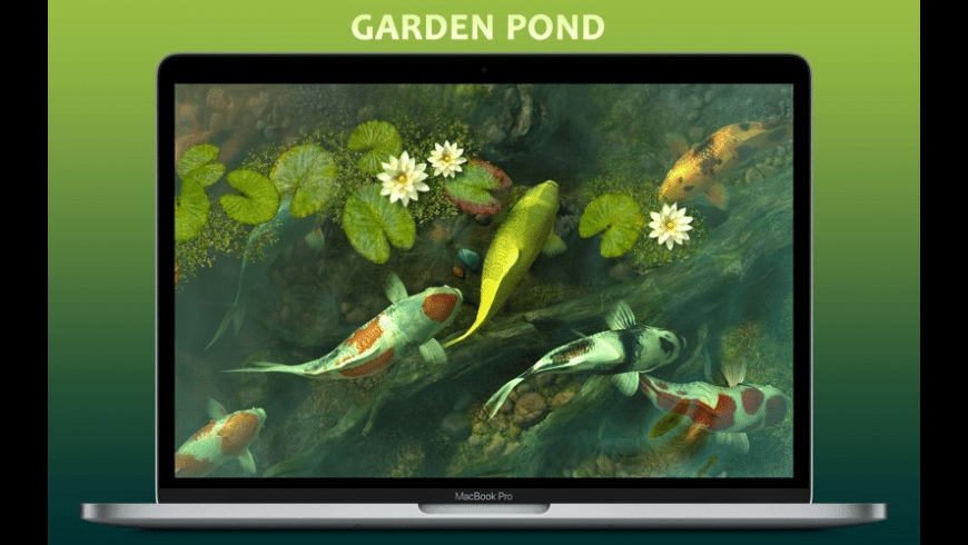Koi Pond 3D for Mac - review, screenshots