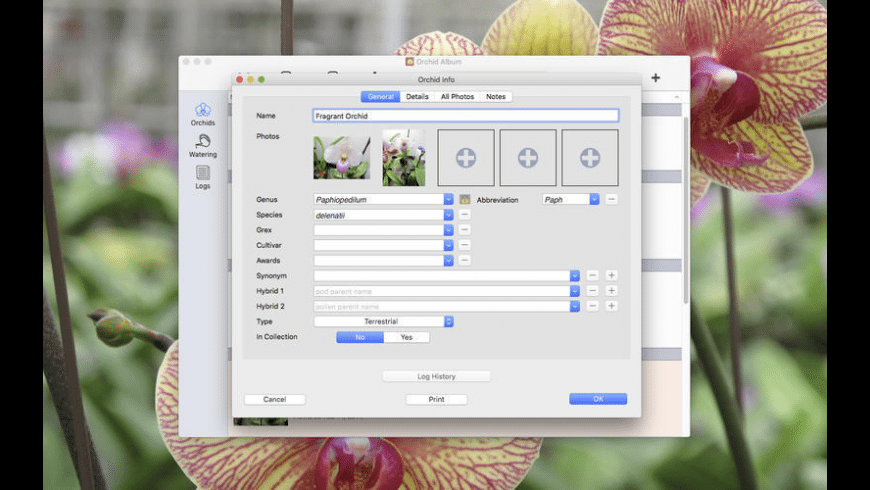 Orchid Album for Mac - review, screenshots