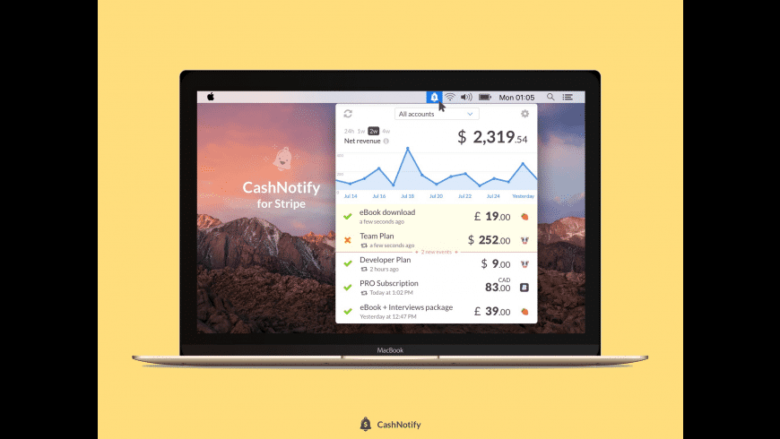 CashNotify for Mac - review, screenshots