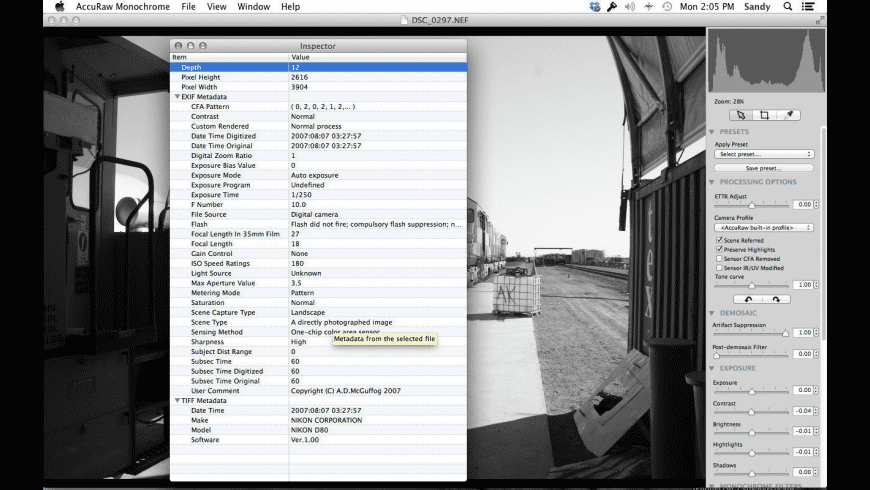 AccuRaw Monochrome for Mac - review, screenshots