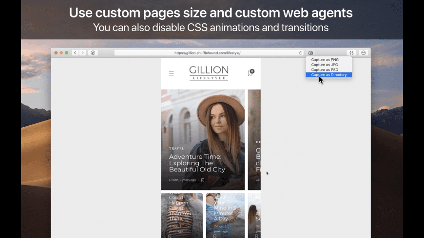 WebToLayers for Mac - review, screenshots