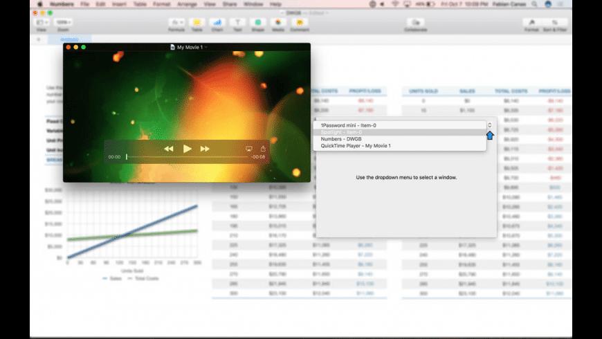 Duplicate Windows for Mac - review, screenshots