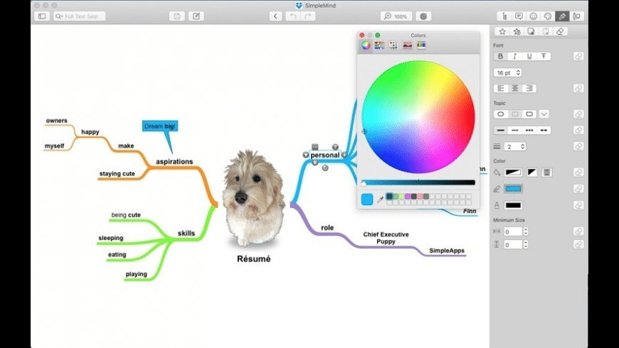 SimpleMind for Mac - review, screenshots