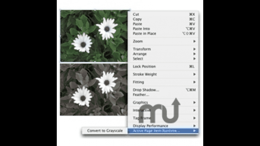 Color2Gray for Mac - review, screenshots