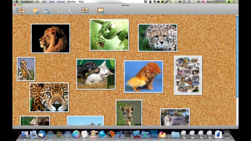 ExpoBoard for Mac - review, screenshots
