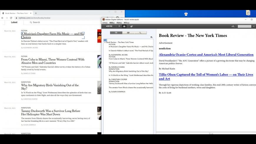 BookIt Desktop for Mac - review, screenshots