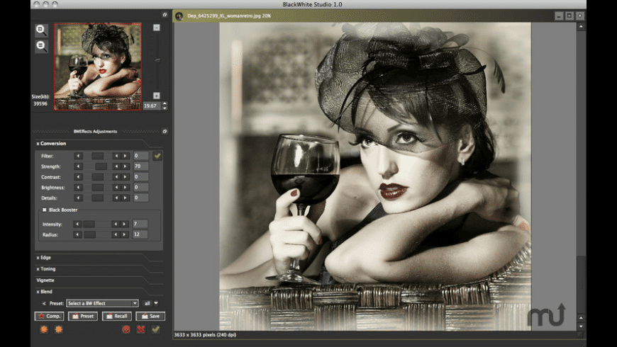 BlackWhite Studio for Mac - review, screenshots