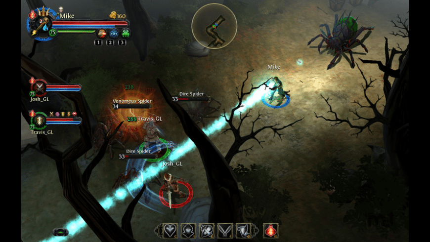 Dungeon Hunter: Alliance for Mac - review, screenshots
