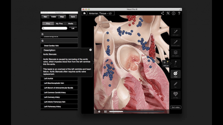Heart Pro for Mac - review, screenshots