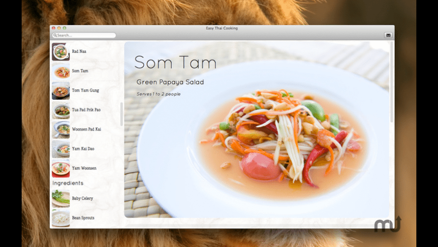Easy Thai Cooking for Mac - review, screenshots