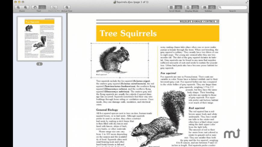 DjVuReader for Mac - review, screenshots