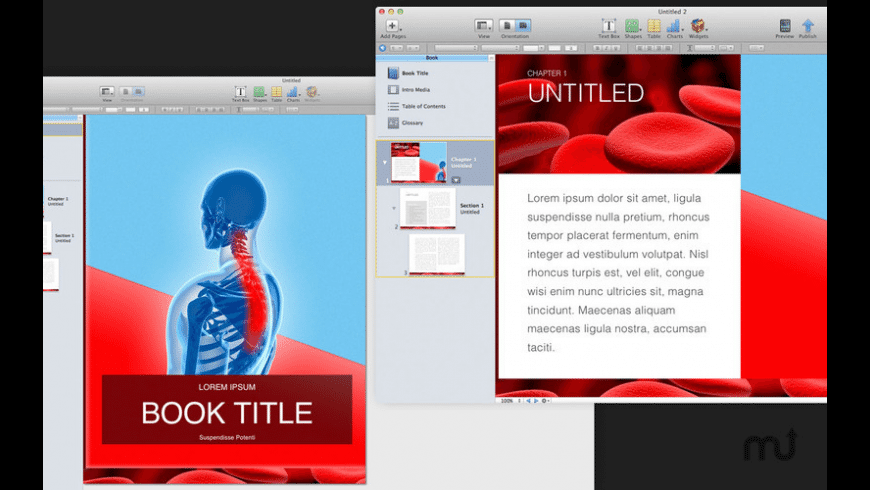 Templates for iBooks Author for Mac - review, screenshots