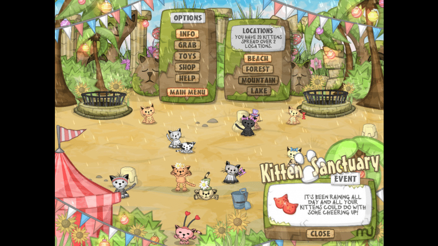 Kitten Sanctuary for Mac - review, screenshots