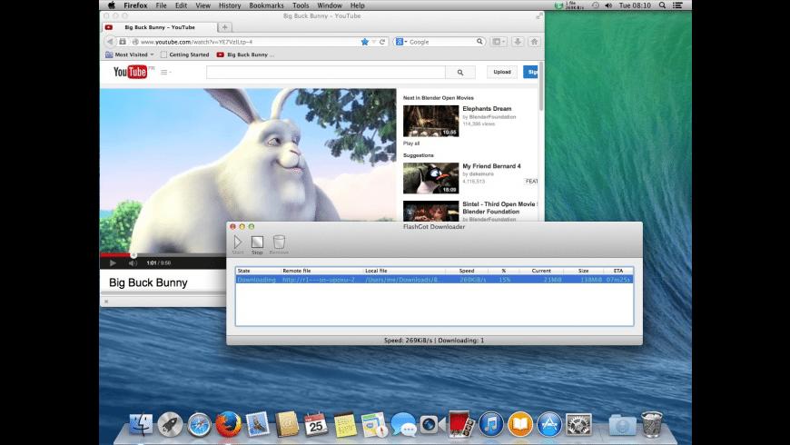 FlashGot Downloader for Mac - review, screenshots