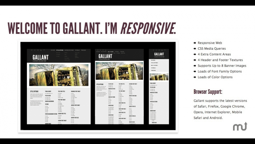Gallant for Mac - review, screenshots