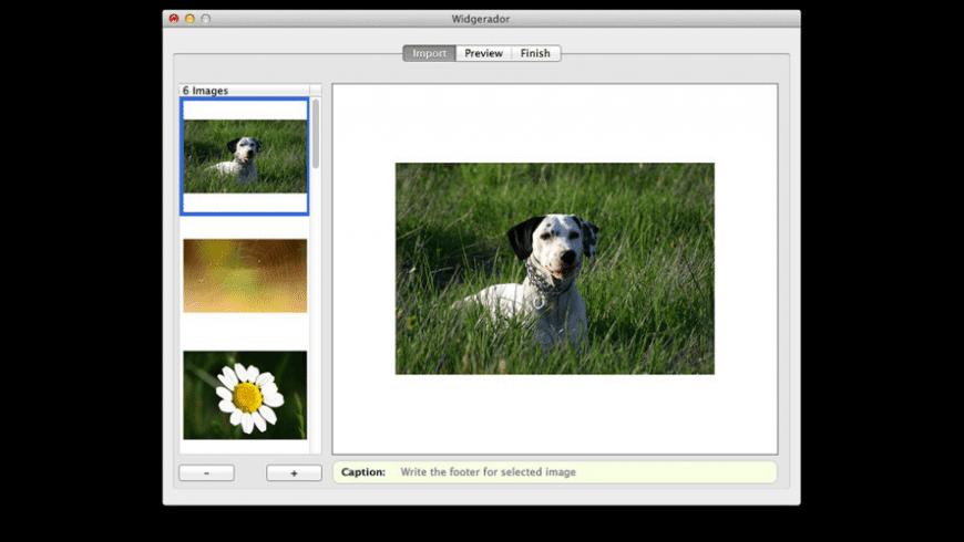 Widgerador for Mac - review, screenshots