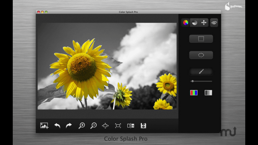 Color Splash Pro for Mac - review, screenshots