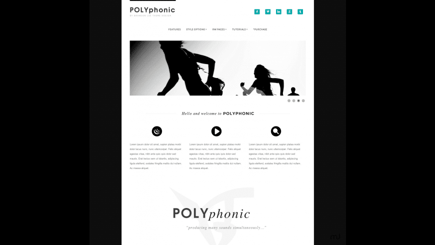 Polyphonic for Mac - review, screenshots