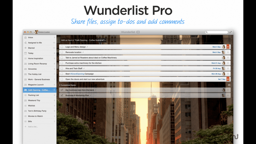 Wunderlist Pro (5-Person License) for Mac - review, screenshots