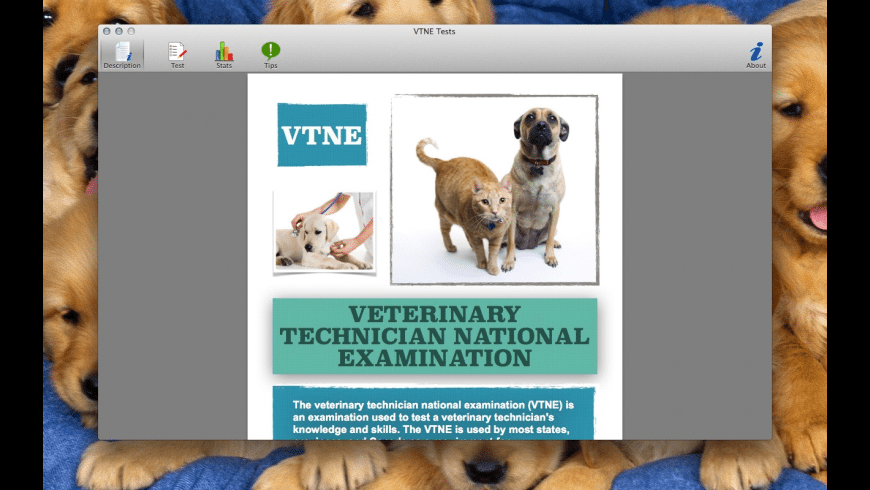 VTNE Tests for Mac - review, screenshots