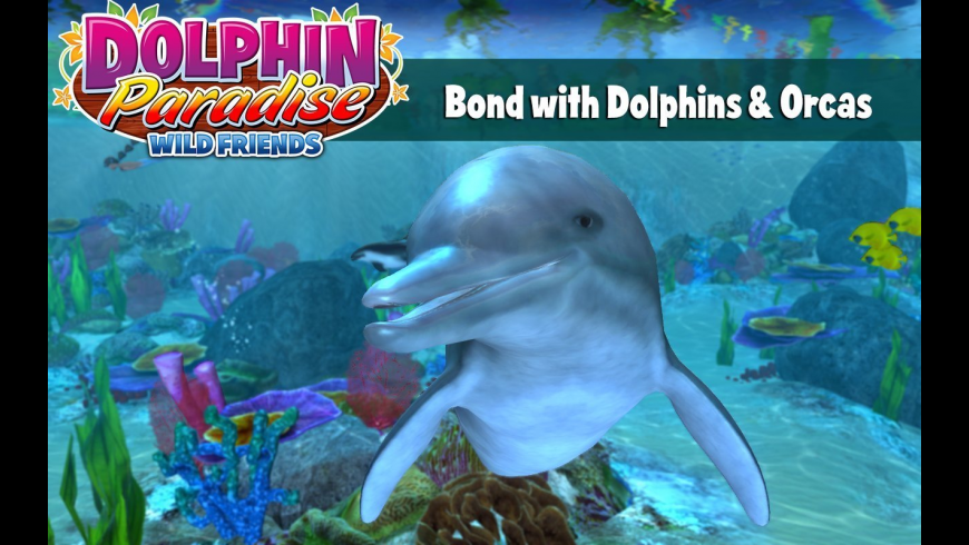 Dolphin Paradise: Wild Friends for Mac - review, screenshots