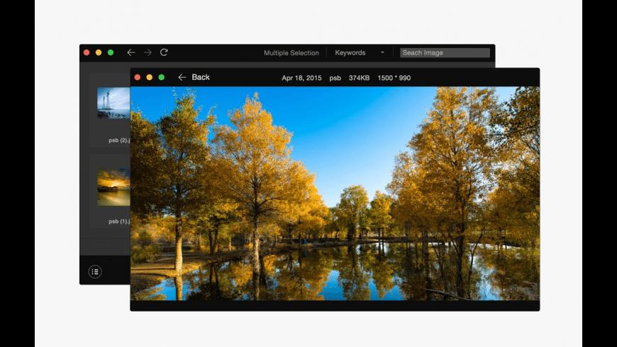 Pixy for Mac - review, screenshots