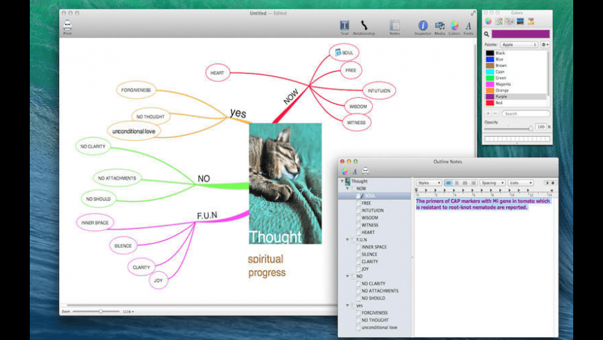 My Mind for Mac - review, screenshots