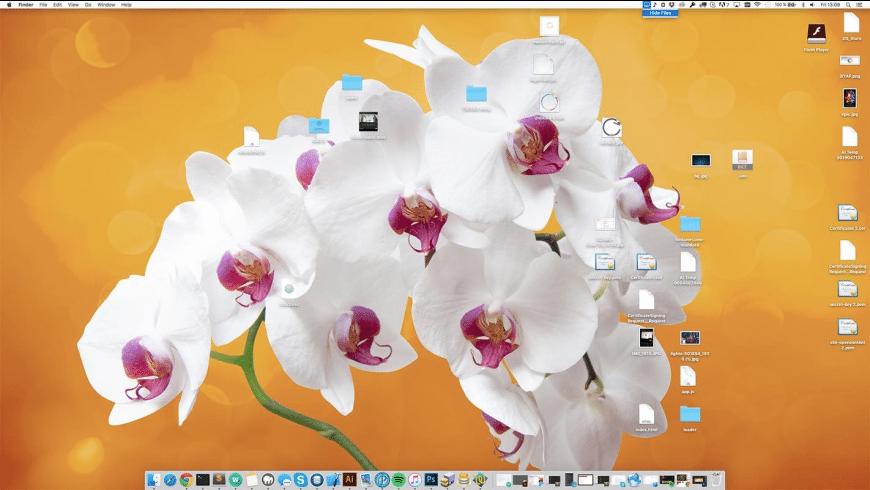 Hide Desktop Files for Mac - review, screenshots