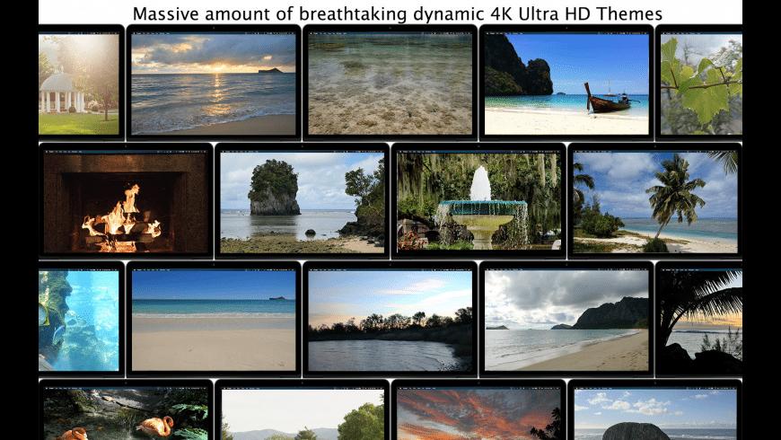 Serenity 4K - Live Wallpaper for Mac - review, screenshots