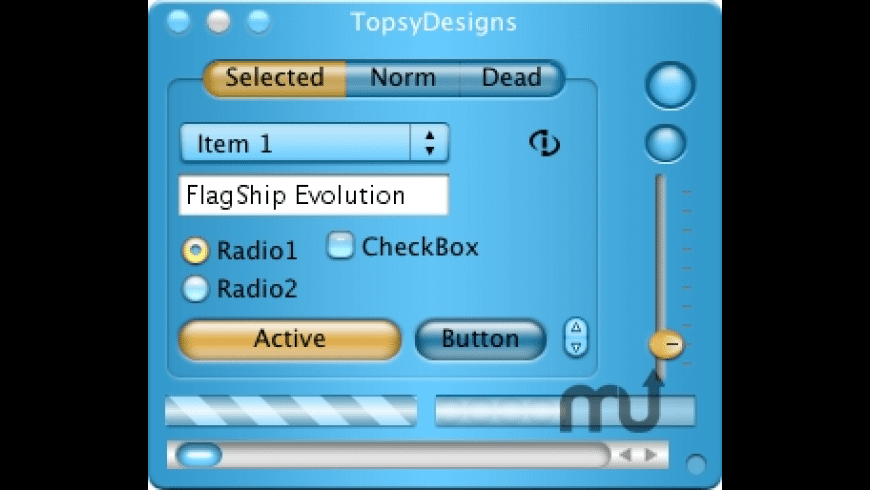 FlagShip for Mac - review, screenshots