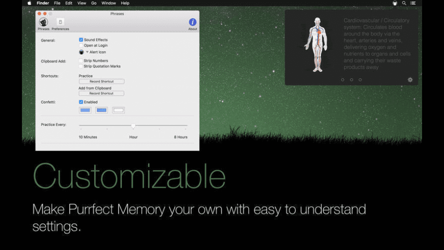 Purrfect Memory for Mac - review, screenshots