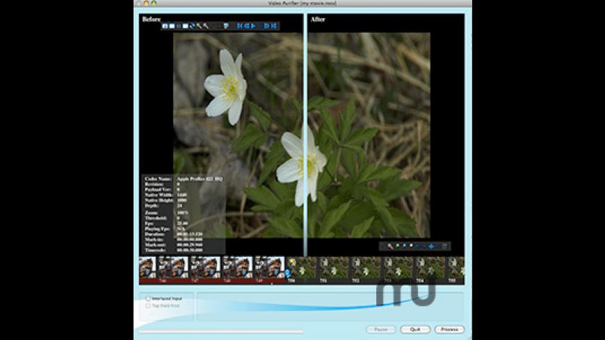 Video Purifier for Mac - review, screenshots