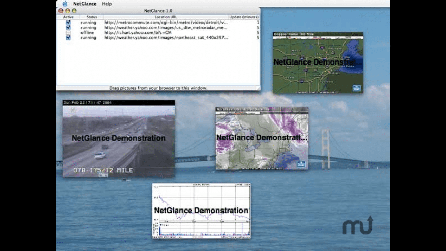 NetGlance for Mac - review, screenshots