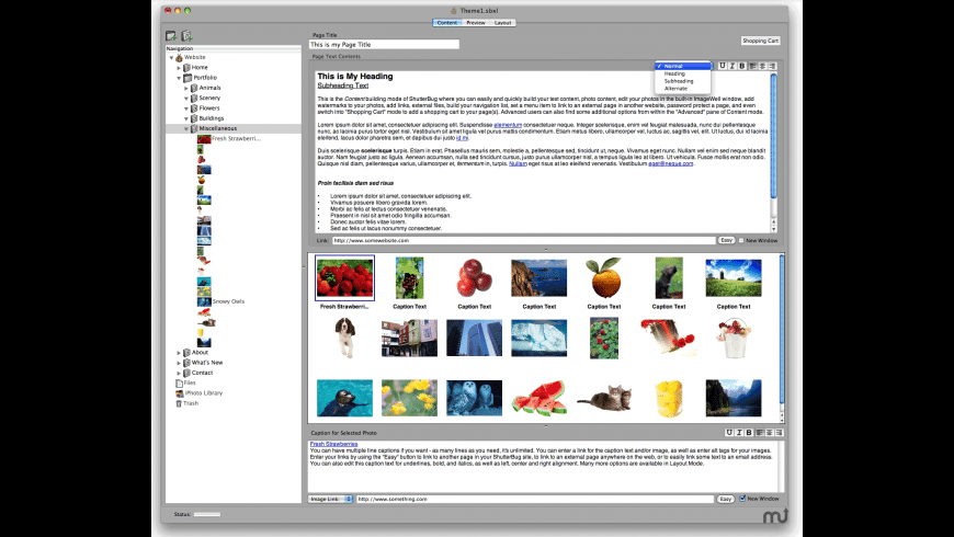 ShutterBug for Mac - review, screenshots