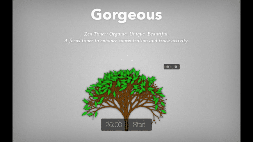 Zen Timer for Mac - review, screenshots
