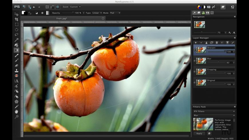 PaintSupreme for Mac - review, screenshots