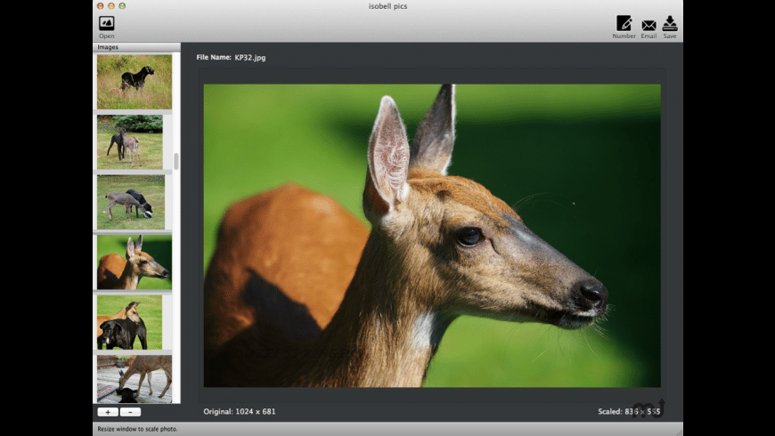 DragNScale for Mac - review, screenshots