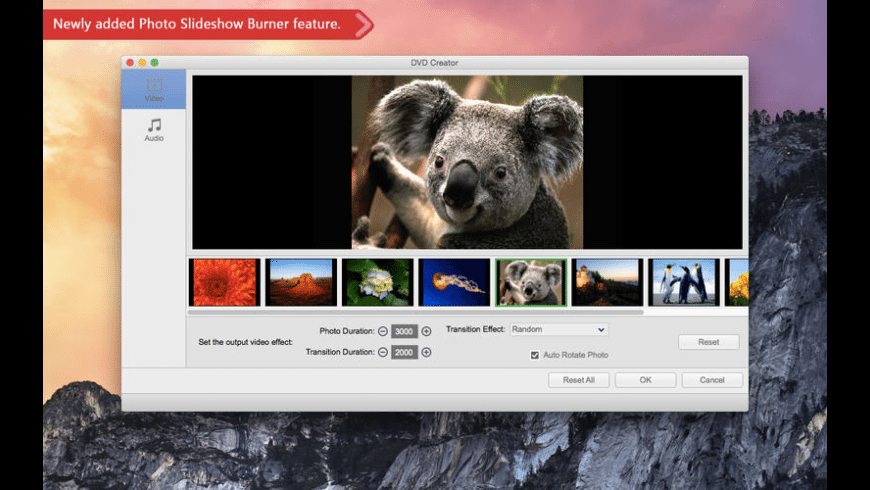 DVD Creator for Mac - review, screenshots
