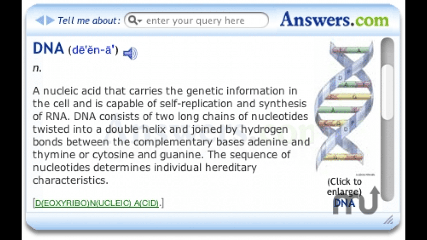 Answers Widget for Mac - review, screenshots